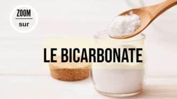 bicarbonate de soude produit brut