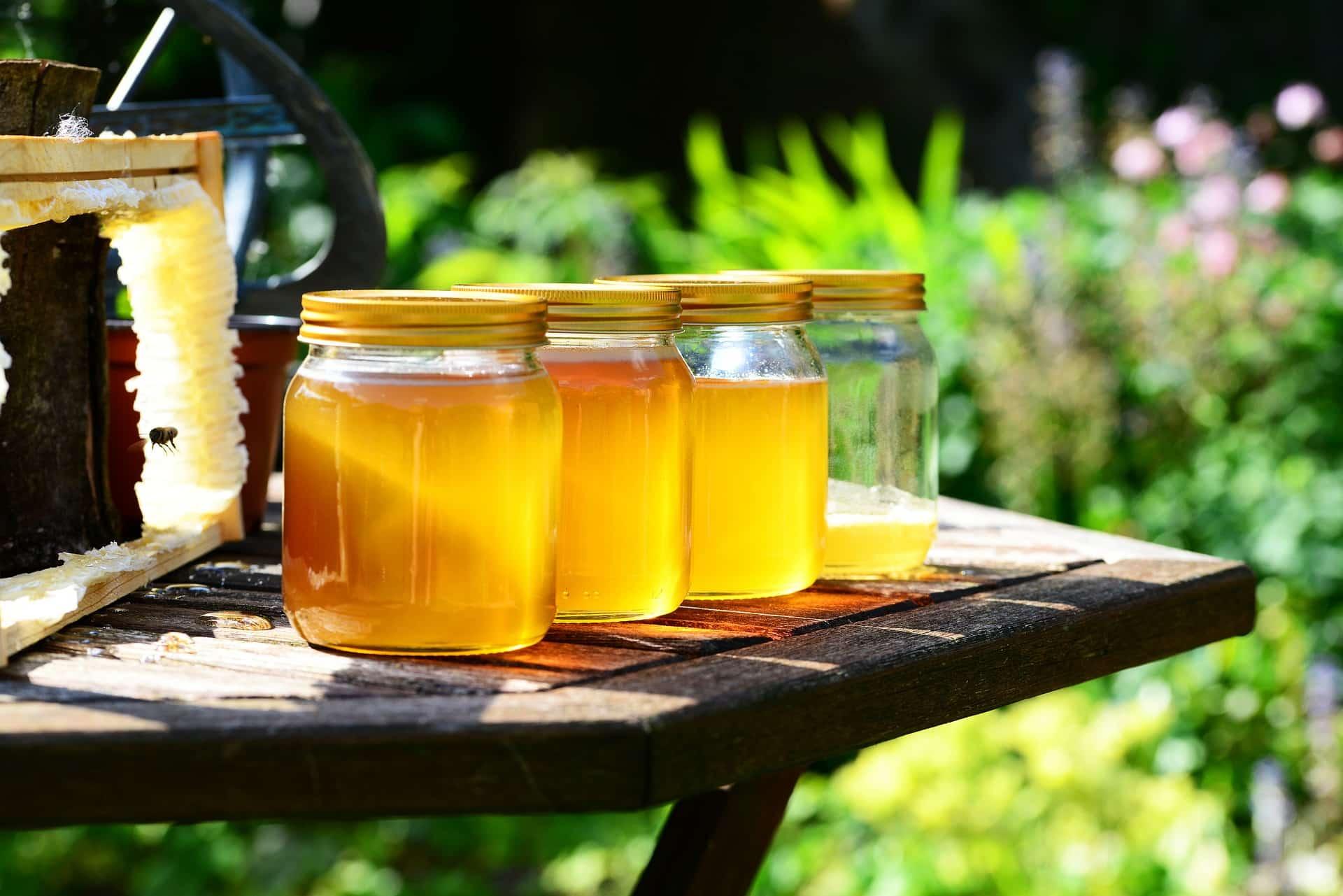 miel pots bienfaits