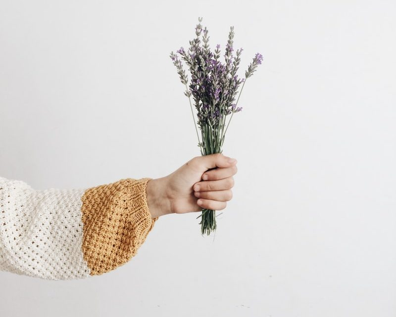 infusion à la lavande thé tisane bouquet zéro déchet