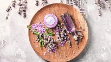 eau florale huile essentielle de lavande bienfaits