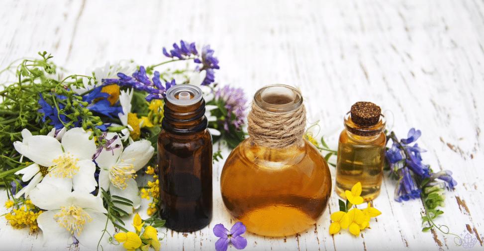 huile végétale plantes zéro déchet