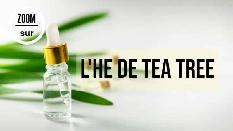 huile essentielle de tea tree arbre à thé flacon HE