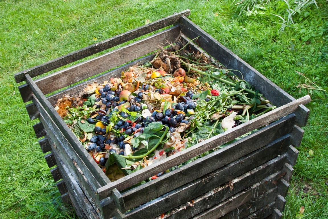 éviter moucherons dans son compost lombricompost bac