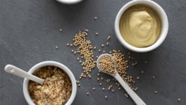 recette de moutarde à l'ancienne dijon