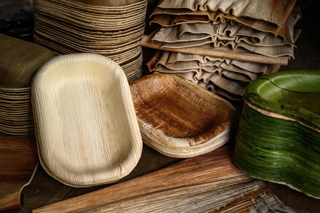 vaisselle écologique en feuilles de palmier assiettes