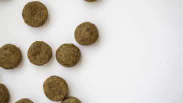 croquettes pour chien maison recette