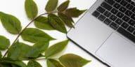ordinateur pc feuilles vertes boîtes mails écologiques