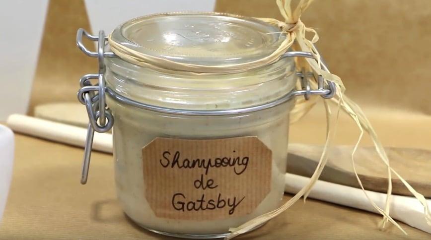 shampoing pour chien naturel recette facile rapide express