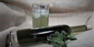 recette sirop de menthe zéro déchet sans colorants