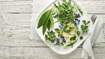 fleurs et plantes comestibles plat assiette vegan végétarien
