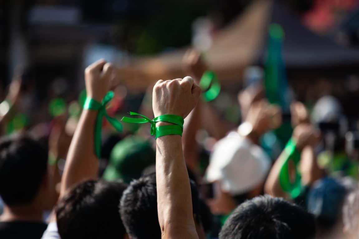 festivals ecolos festival manifestation