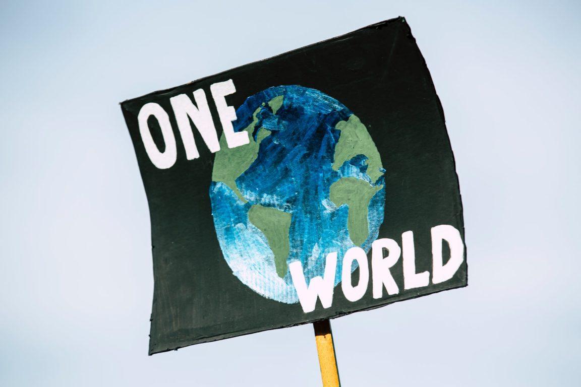 panneau manifestation jour de la terre 22 avril 2020