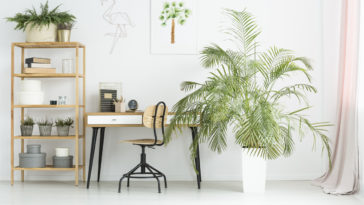 mobilier made in france fabriqué en france bureau plantes zéro déchet