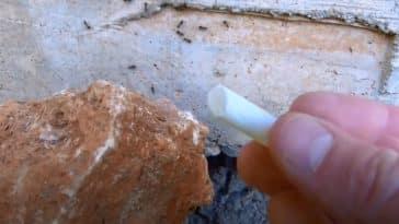 remèdes naturels craie contre les fourmis éloigner