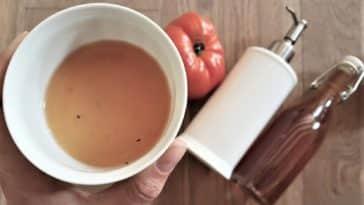 astuces anti moucherons mouches du vinaigrelutter contre les insectes