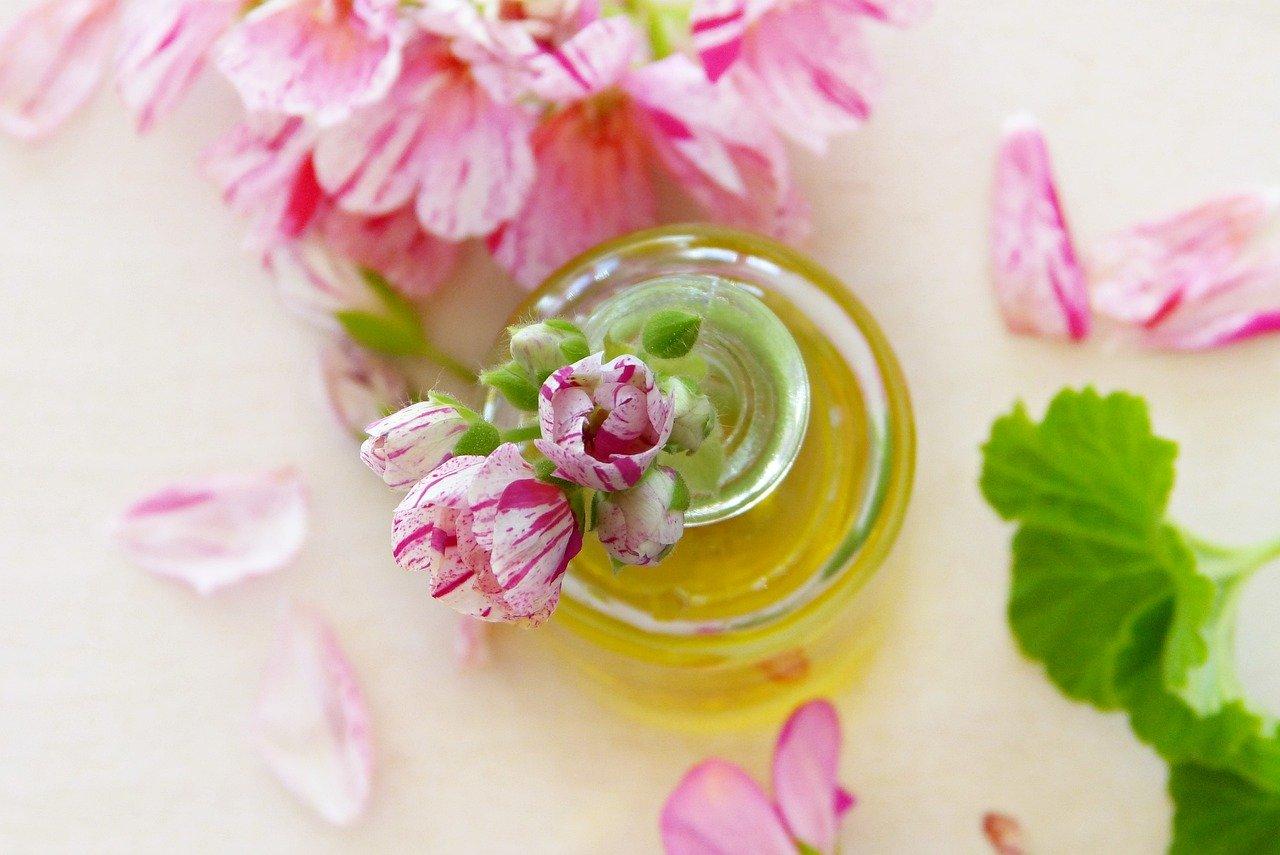 huile essentielle géranium moucherons