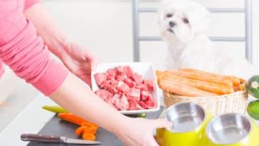 nourriture BARF alimentation chien chat