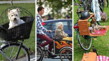 astuces pour tout faire en vélo photos