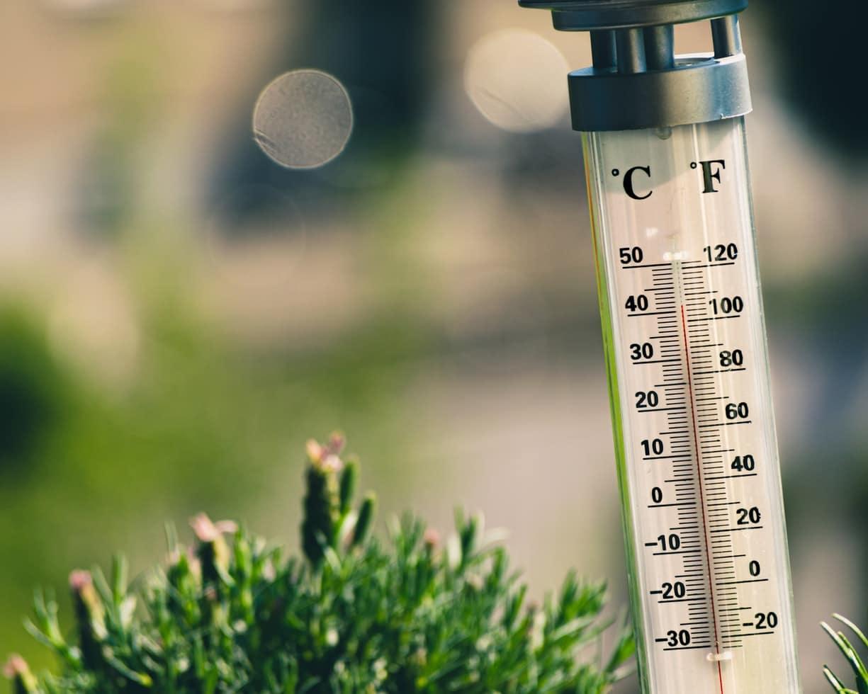 thermomètre chaleur été canicule température