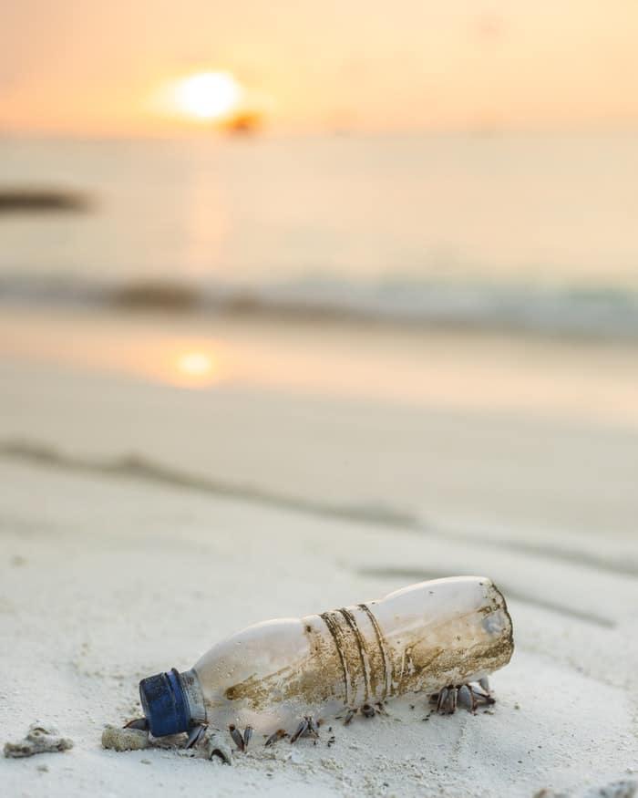 bouteille en plastique pollution déchet plage