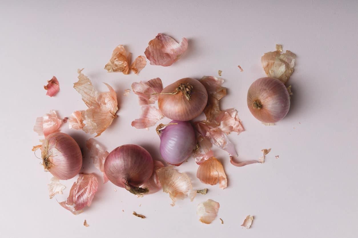 oignons rouges peles pelures epluchures condiment