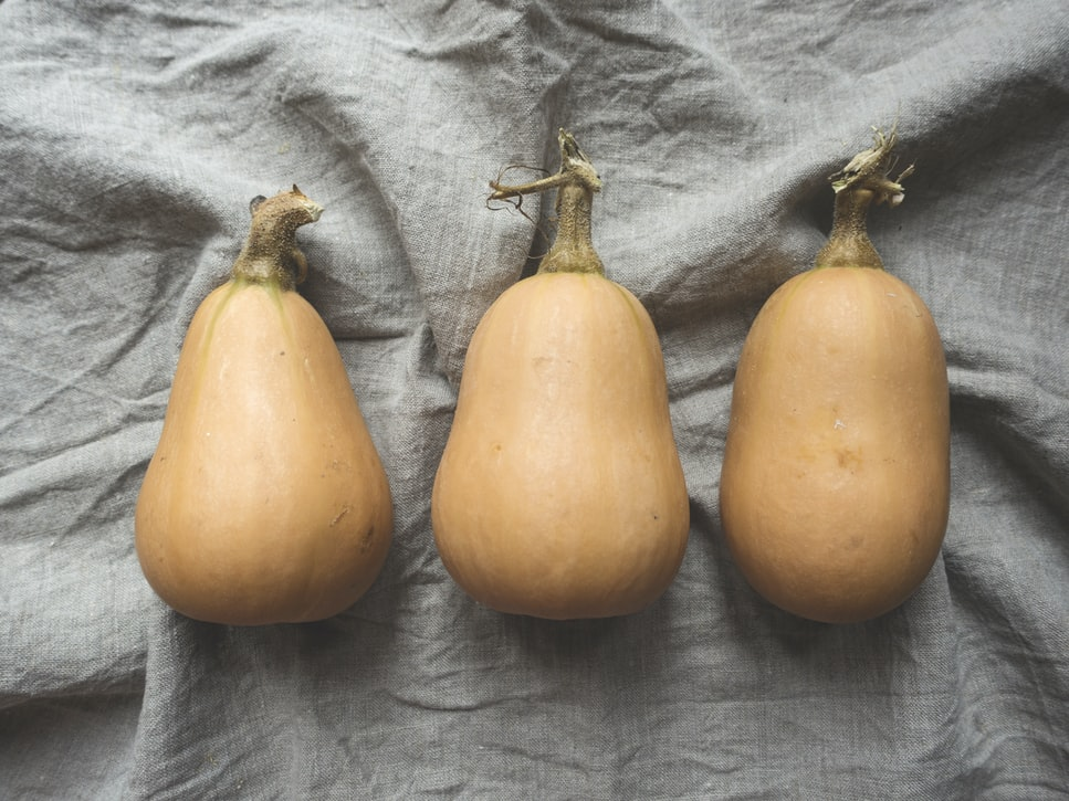 courges butternut recette légumes automne