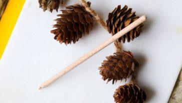 cure oreille bois oriculi coton tige réutilisable caliquo