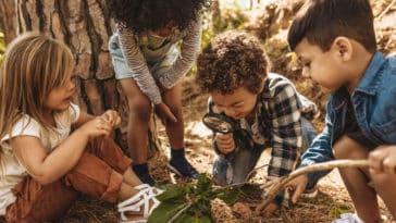 enfants dans la forêt nature plein air bois