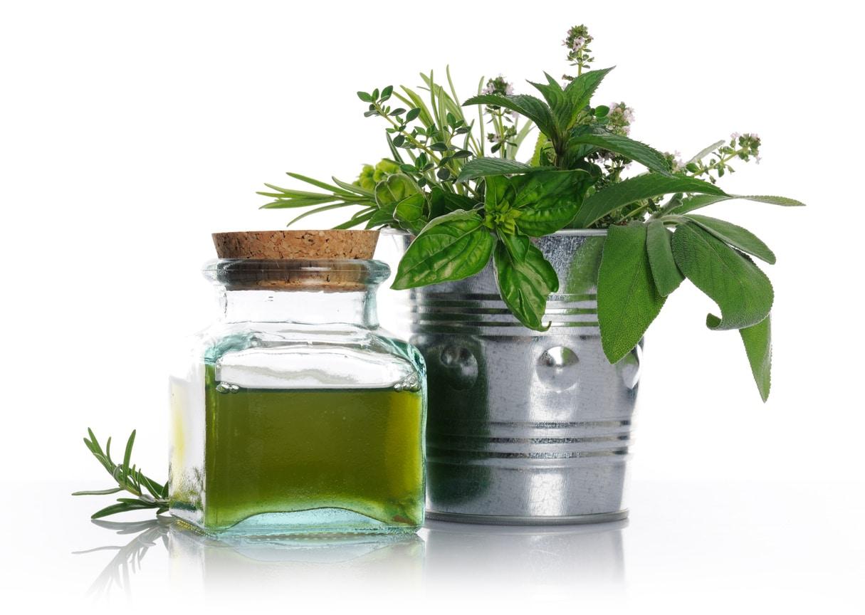herbes aromatiques bain de bouche naturel plantes