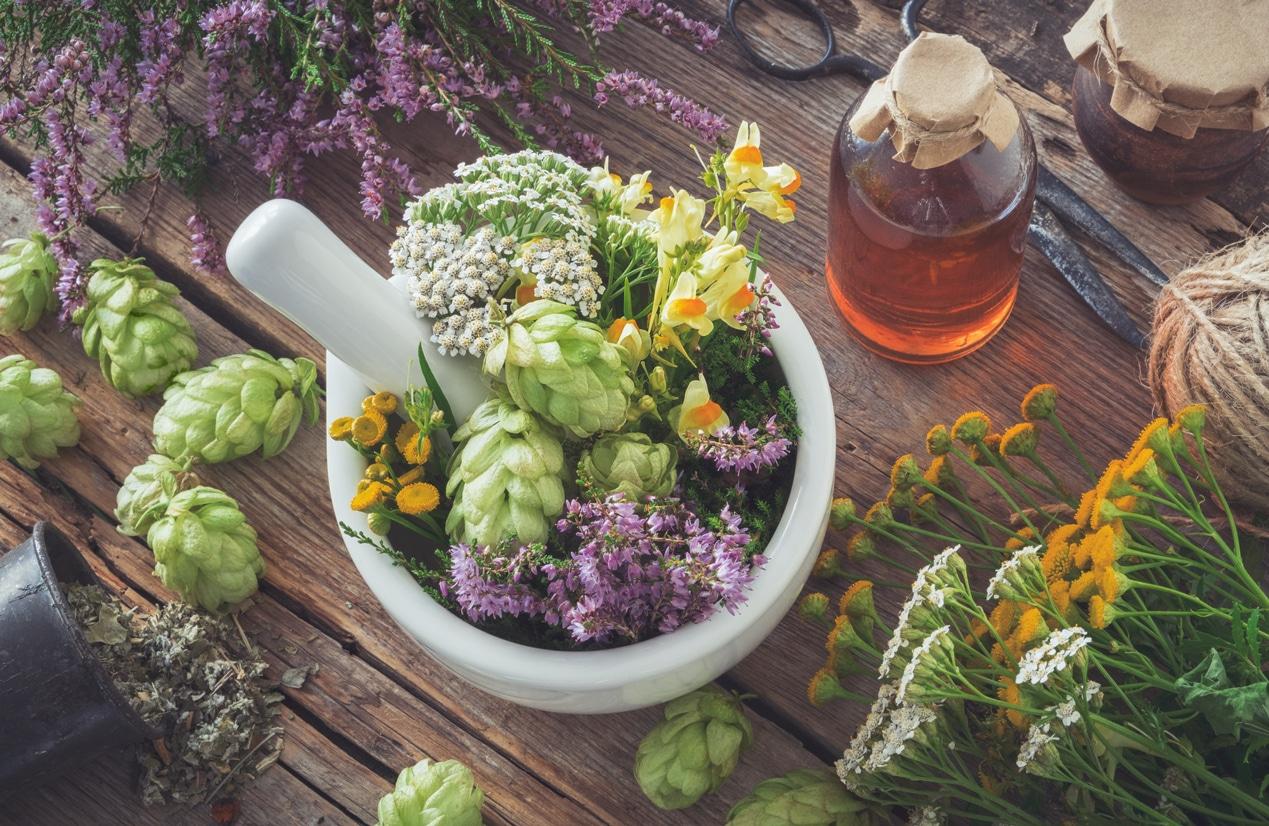 plantes médicinales herbes aromatiques mortier bol fleurs