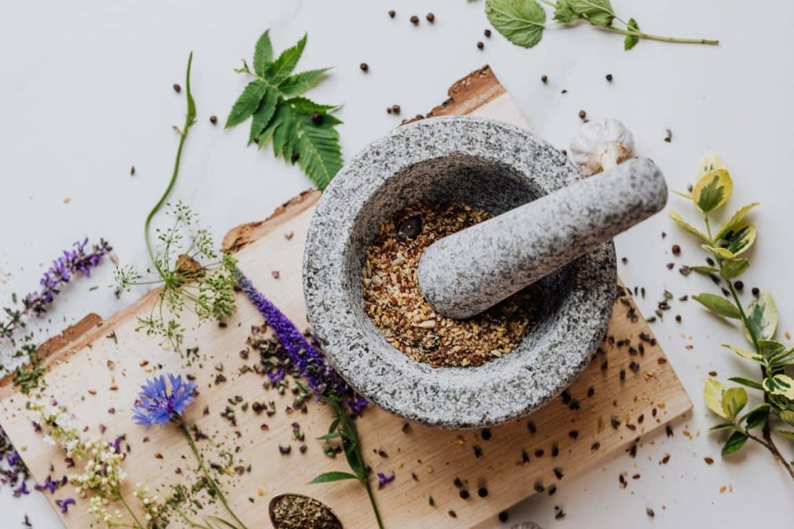 nature fleurs plantes médicinales qui guérissent mortier