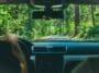 voiture conduite écologique conduire foret