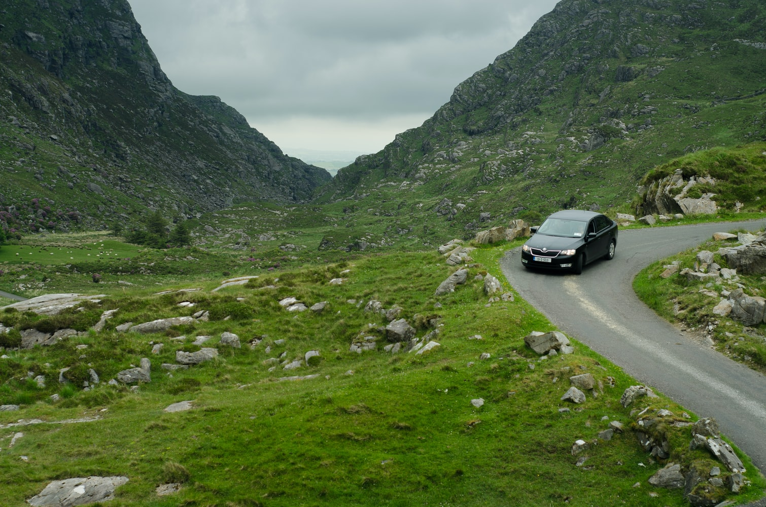 voiture route virage conduite écologique nature