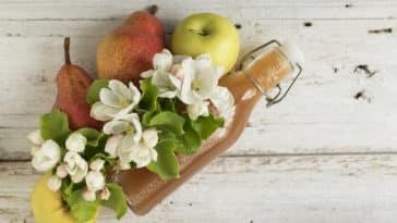 jus de pommes poires épluchures fruits pelures bouteille recette