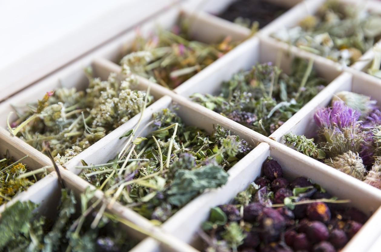 thé tisanes infusion herbes séchées plantes DIY