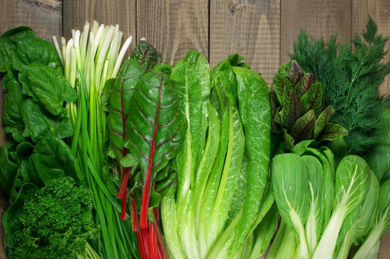 feuilles de légumes verts aliments cuisine