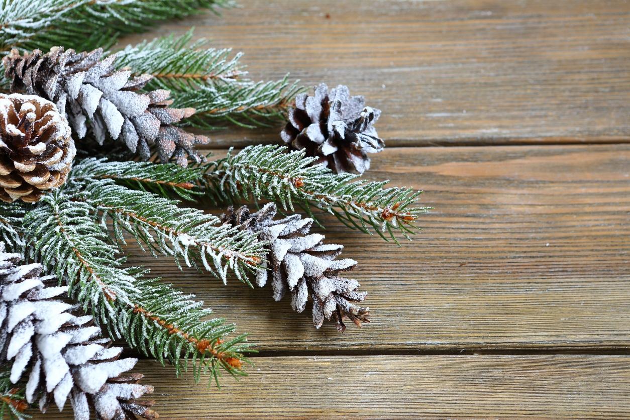 neige artificielle branches sapin pommes de pin décoration Noel