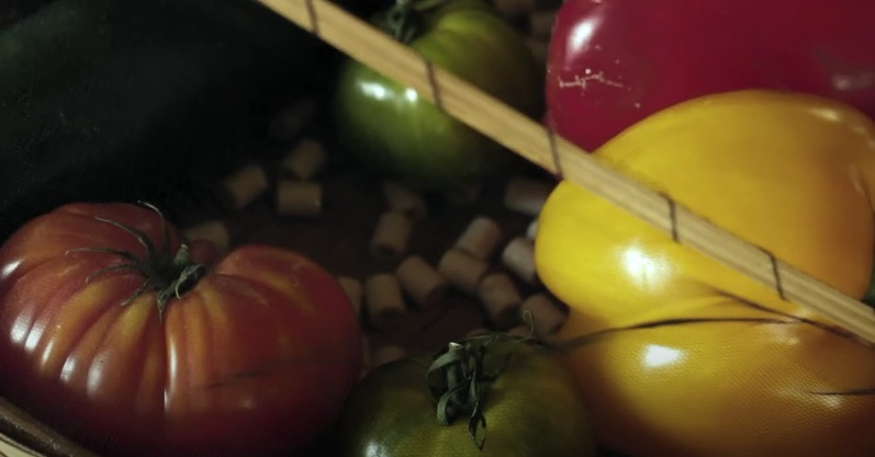 perles de céramique utilisation eau fruits
