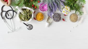 herbes plantes médicinales se soigner naturel remède