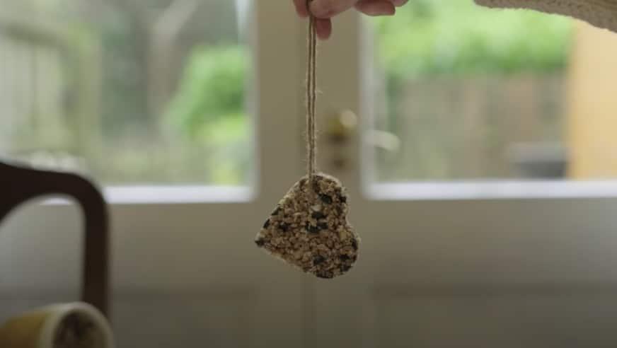 nourriture oiseaux naturelle maison DIY