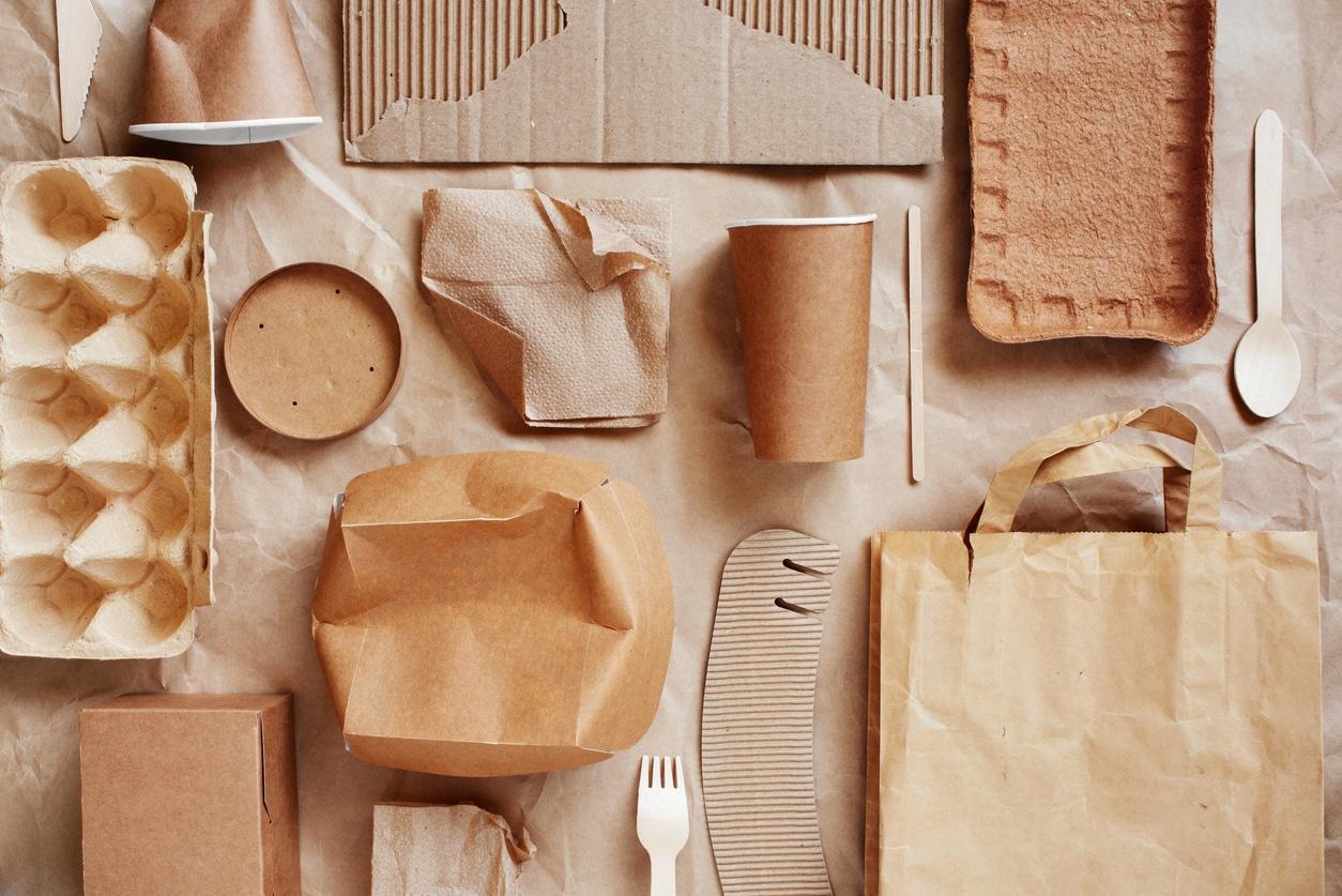 emballages écologiques kraft carton jetable usage unique