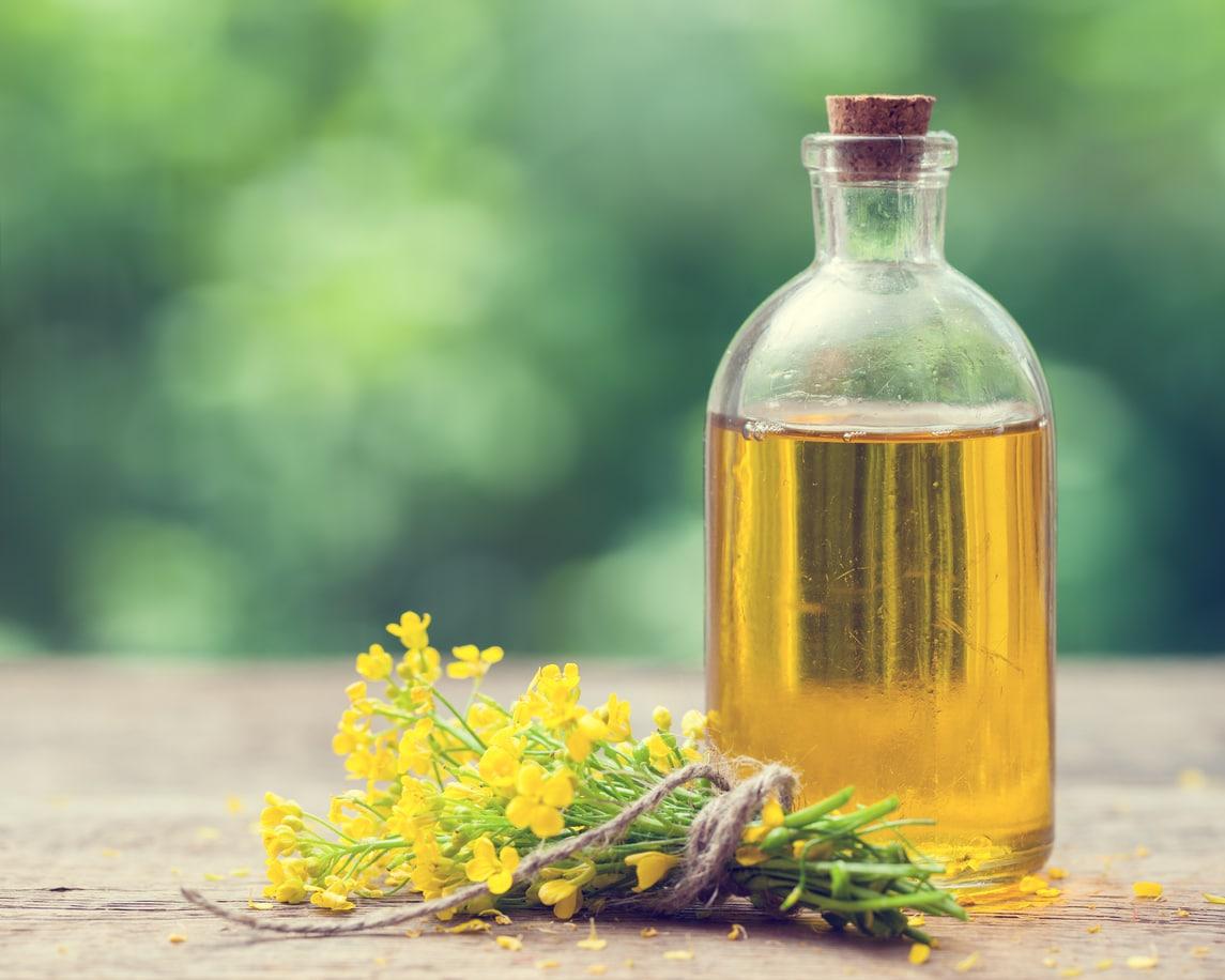 flacon bouteille huile de colza bienfaits vertus plantes