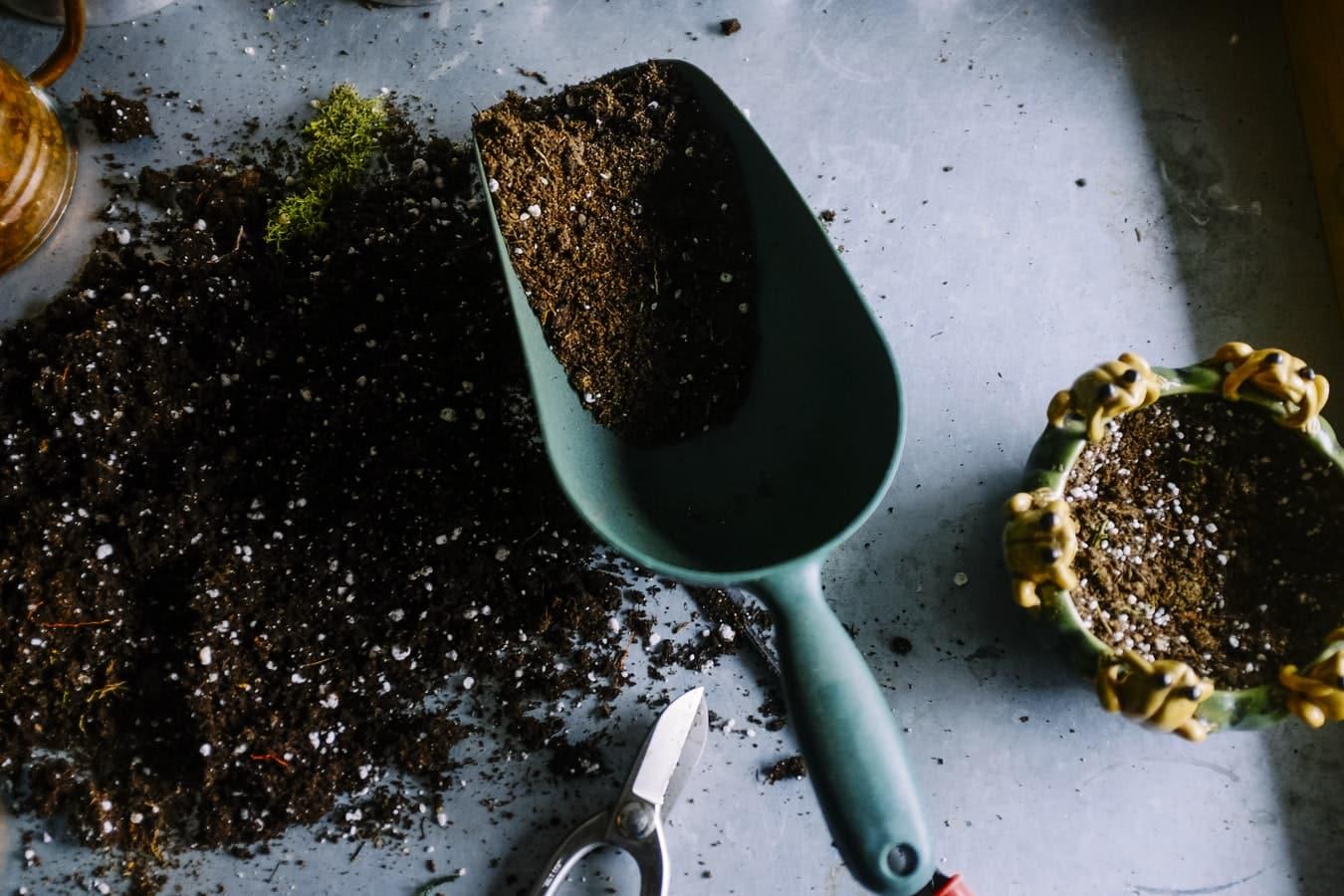 outils de jardinage terre pelle jardin vert