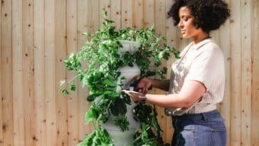 plante verte femme jardin jardinage jardiner zéro déchet