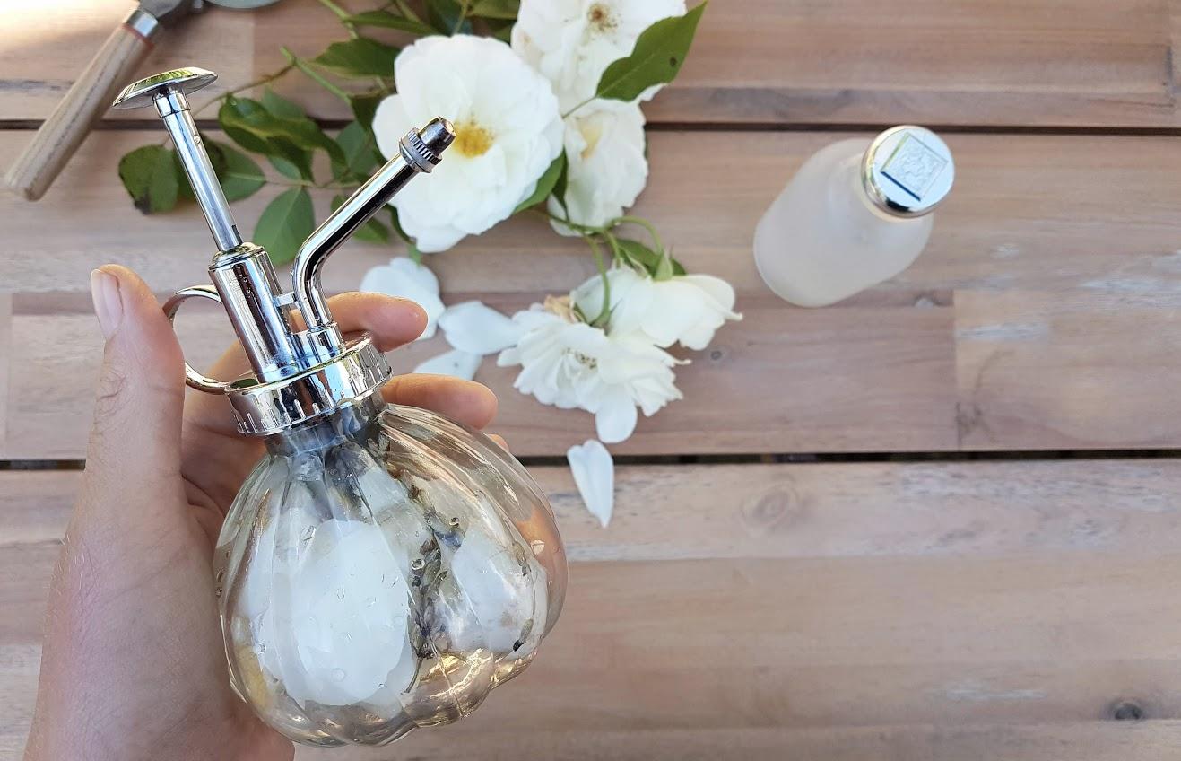 parfum maison eau de Cologne rose fleurs