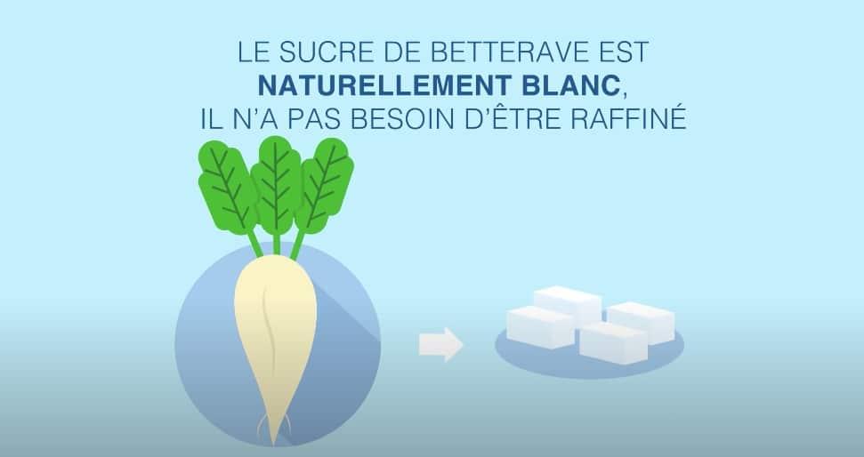 betterave sucre industrie sucrière