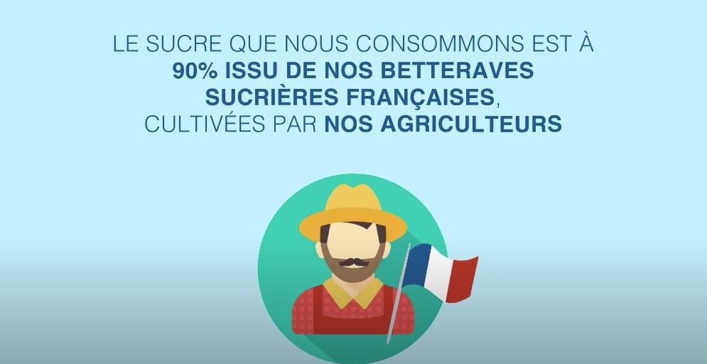 culture de la betterave sucrière production France