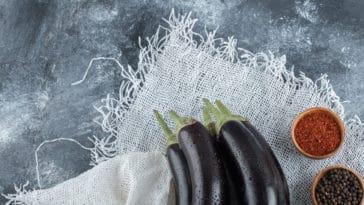 dentifrice naturel aubergines cendres recette maison zéro déchet blanchissant