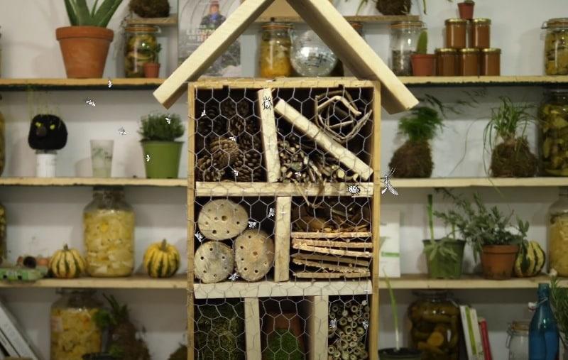 fabriquer hôtel insectes maison cabane bois