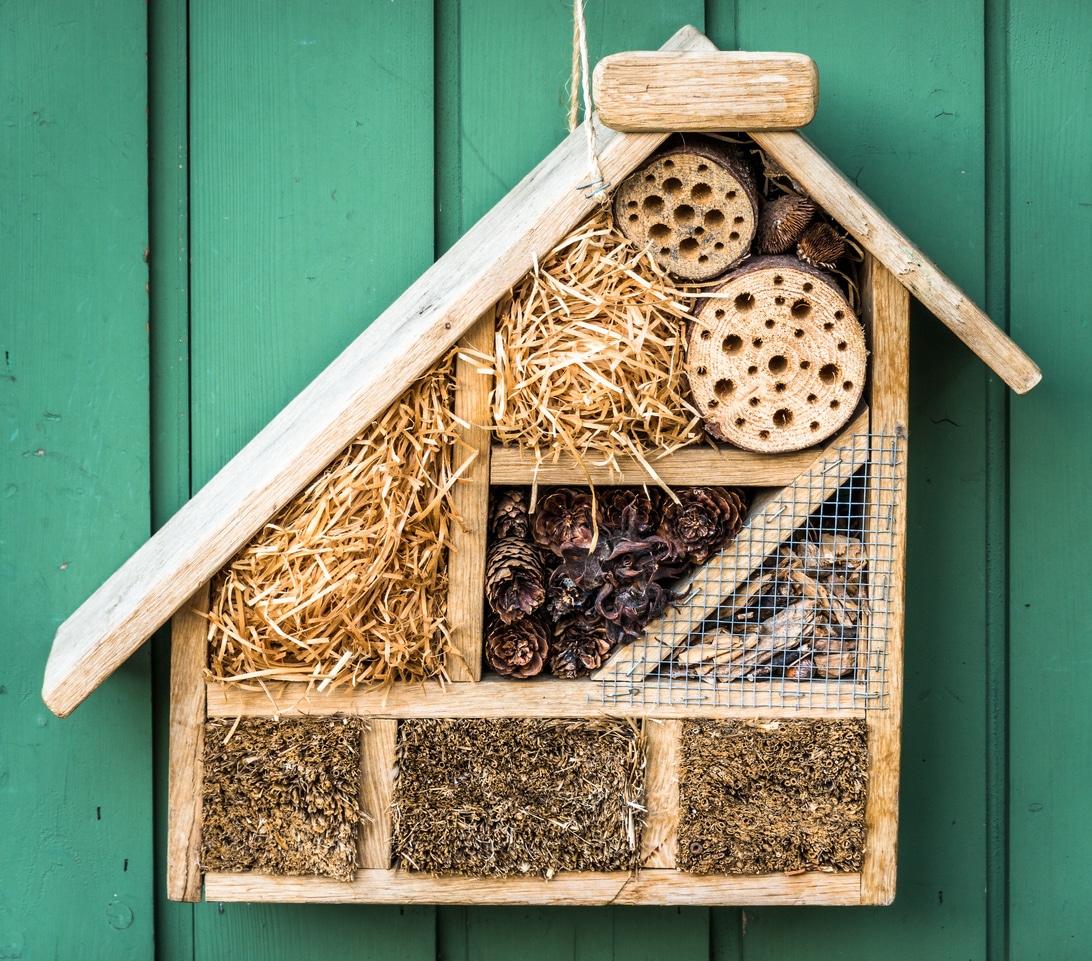 hôtel à insectes cabane abri en bois fabriquer jardin construire